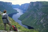 Tourist Overlooking Western Brook Pond