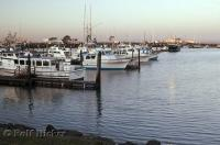 The calm waters of the Westport Marina and harbor in Washington, USA.