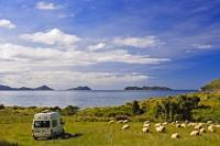 Located in a remote location on the outskirts of the Marlborough Sounds, the Titirangi Bay Campground offers true wilderness camping, surrounded by sheep and stunning ocean views.