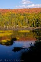 The scenery in the wilderness of Quebec is stunning and attracts visitors from all over the world. In this picture of Quebec, fall reflections on Lac des Cypres along Highway 3 can be seen in the foreground with the autumn coloured trees in the background