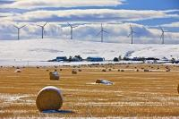 In Southern Alberta, Canada, hay bales stand in a snow-covered field back-dropped by modern windmills. These wind turbines produce electricity for the Pincher Creek area.