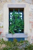 The Plants and Window Bars filling this window in the city of Volterra in Tuscany, Italy ensures privacy for the house owner.