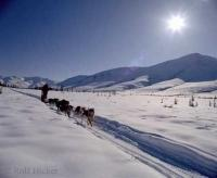 Winter Scenes with a dog sled and the snow covered mountains of the Brooks Range.
