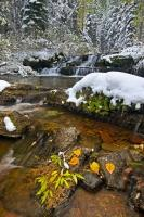 Winter Waterfall Snow Scenery