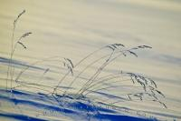 Abstract Winter Arts Background