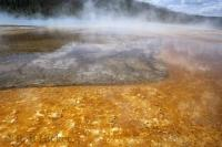 The hot springs in the Yellowstone National Park which spans across Idaho, Montana, and Wyoming in the USA.