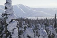 A classic nature and adventure travel destination is the Yukon Territory in Northern Canada.