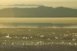 Great Salt Lake Utah