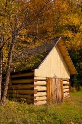 Old Hut And Fall Leaves Picture