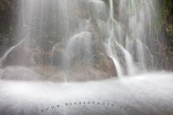 Water Details Temperate Coastal Rainforest Waterfall Picture