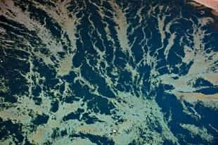 photo of Abstract Patterns Pacific Ocean