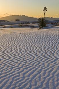 photo of Abstract Sand Patterns