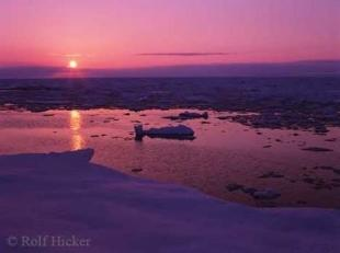 photo of Pack Ice Shoreline Newfoundland Sunset Pictures