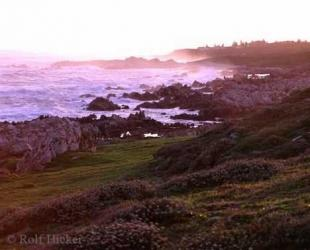 photo of Africa Vacations Coast False Bay