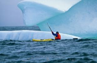 photo of Adventurous Ocean Sea Kayaking Tour Newfoundland