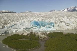 photo of Helicopter Tour To Juneau Icefield And Glacier