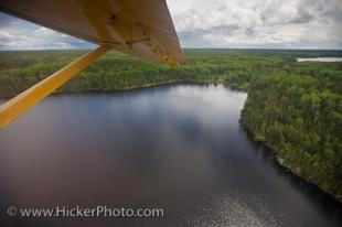 photo of wilderness Aerial Woodland Caribou Provincial Park Ontario Canada