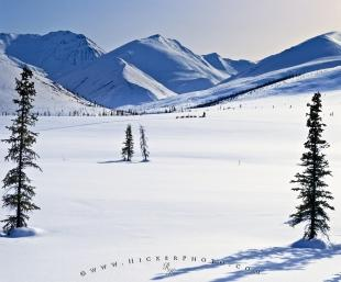 photo of Arctic Alaska Winter Landscape