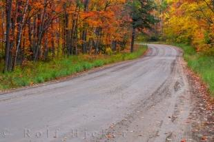 photo of Autumn Road Picture Algonquin Provincial Park