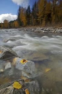 photo of Autumn River Vancouver Island