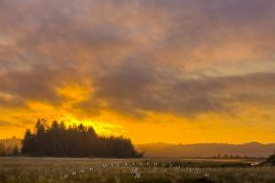 photo of Beautiful Cluxewe River Estuary Sunset British Columbia