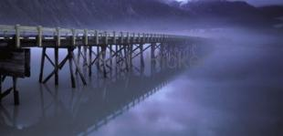photo of Old Wooden Misty Bridge Pictures