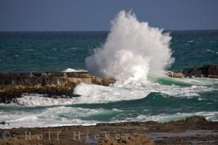 photo of Coastal Wave Action Curio Bay South Island New Zealand