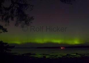 photo of Northern Light Malcolm Island Aurora borealis Pictures