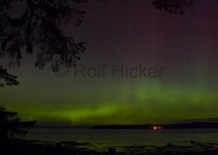 photo of Northern Lights Night Sky