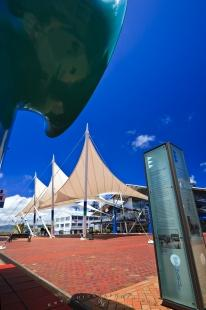 photo of Queens Wharf Square Wellington NZ