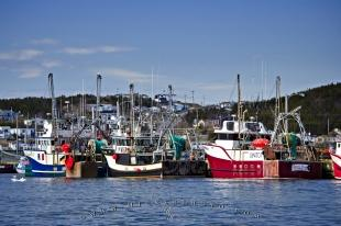 photo of Fishing Boats St Anthony