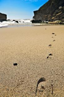 photo of Footprints Scenic Sand Kohaihai Beach West Coast New Zealand