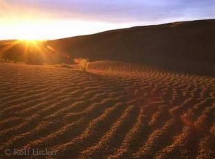 photo of Great Sand Hills