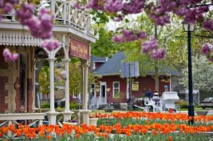photo of Historic Prince Of Wales Hotel Niagara On The Lake