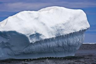 photo of Atlantic Ocean Iceberg Facts Newfoundland