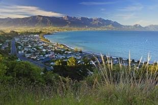 photo of Kaikoura New Zealand Pictures
