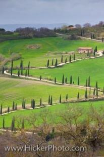 photo of La Foce Zigzagging Road Cypress Trees Tuscan Landscape Tuscany Italy