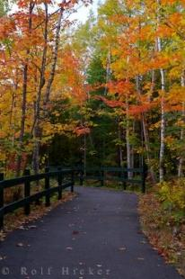 photo of Fall Trail Picture La Mauricie National Park Quebec Canada