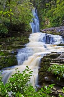 photo of Forest Waterfall McLean Falls Catlins New Zealand