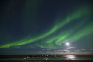 photo of Moon Picture Northern Lights Hudson Bay Manitoba Canada