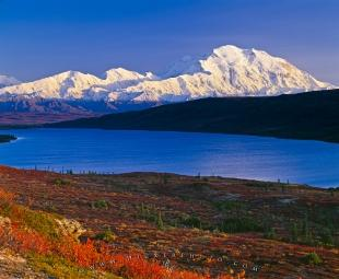 photo of Denali Mountain Fall Lake Scenery Picture