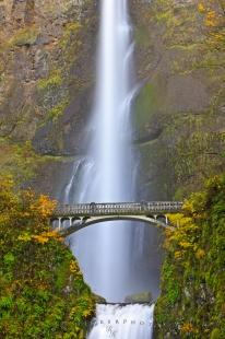 photo of Fall Multnomah Falls Waterfall Oregon
