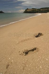 photo of New Zealand Beaches Footprints