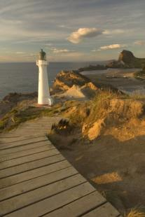 photo of Wooden Path Castle Point Lighthouse New Zealand