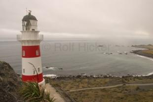photo of Cape Palliser Lighthouse Cook Strait