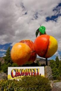 photo of Fruit Sculpture Entrance Cromwell Otago New Zealand