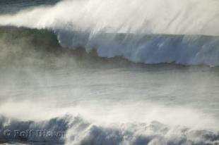 photo of Ocean Wave Photo