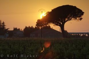 photo of Bouches Du Rhone Provence Sunset