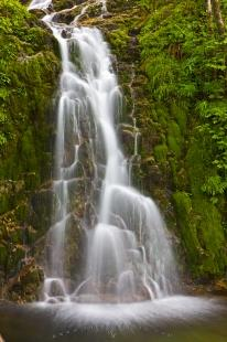 photo of Rainforest Waterfall Picture Northern Vancouver Island Canada