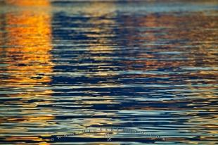 photo of Reflection Of Light Water Ripples
